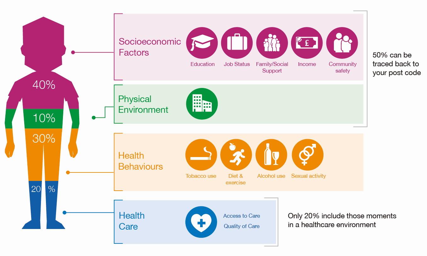 Percentage of factors influences mental health North East Essex Alliance